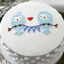 Baby Shower Owls